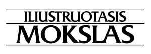logotipasi-tinklalapiui-04